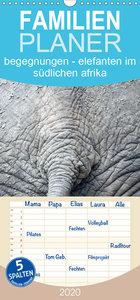 begegnungen - elefanten im südlichen afrika - Familienplaner hoc