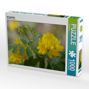 Ginsterblüte 1000 Teile Puzzle quer