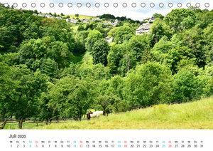 Dedenborn in der Eifel (Tischkalender 2020 DIN A5 quer)