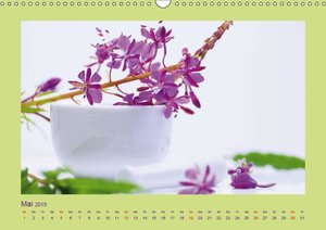 Helfende Kräuter aus dem Garten (Wandkalender 2019 DIN A3 quer)