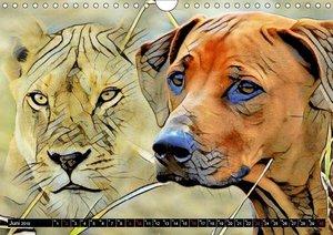 Rhodesian Ridgeback der Hund mit dem Tropfen Löwenblut (Wandkale