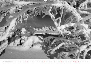 Mystischer Schwarzwald (Wandkalender 2020 DIN A2 quer)