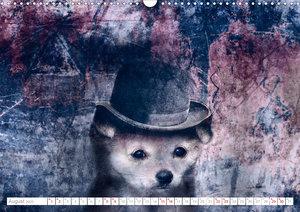Hund trägt Hut (Wandkalender 2020 DIN A3 quer)