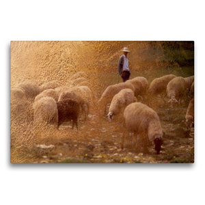 Premium Textil-Leinwand 75 cm x 50 cm quer Hirte und Herde