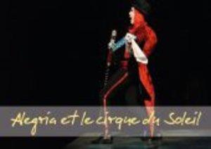 Alegria et le cirque du Soleil (Livre poster DIN A3 horizontal)