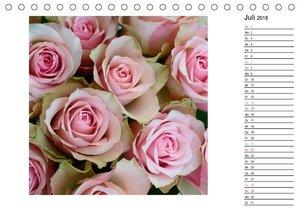 Die vielen Gesichter der Rosen