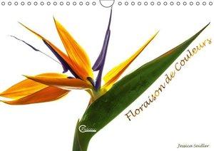 Floraison de couleurs (Calendrier mural 2015 DIN A4 horizontal)