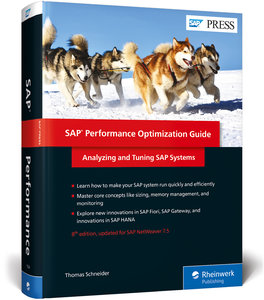 SAP Performance Optimization Guide