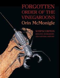 Forgotten Order of the Vinegaroons: Whipscorpion Biology, Husban