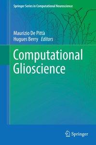 Computational Glioscience