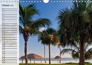FLORIDA Idyllischer Sonnenscheinstaat (Wandkalender 2019 DIN A4