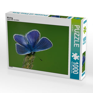 Bläuling 1000 Teile Puzzle quer