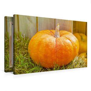 Premium Textil-Leinwand 75 cm x 50 cm quer Halloween Kürbis