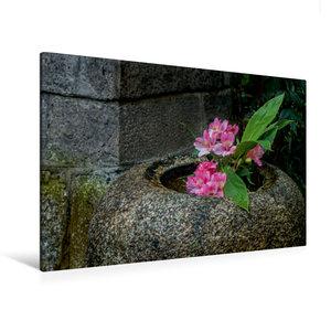 Premium Textil-Leinwand 120 cm x 80 cm quer Blüten in einer Stei