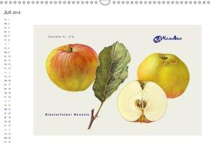 Alte verträgliche Apfelsorten