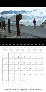 Alpine Passes on the Racing Bike Vol. 1