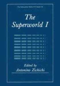The Superworld I