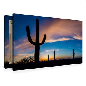 Premium Textil-Leinwand 75 cm x 50 cm quer Saguaro Nationalpark