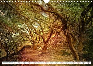 Faszination Korfu (Wandkalender 2020 DIN A4 quer)
