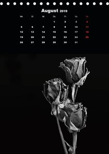 Trockenblumen Schönheiten in schwarz-weiß (Tischkalender 2019 DI