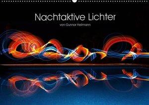 Nachtaktive Lichter (Wandkalender 2019 DIN A2 quer)