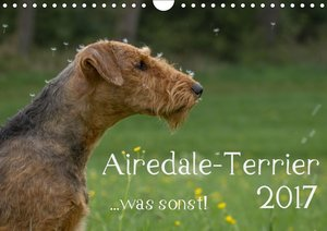 Airedale-Terrier, was sonst!
