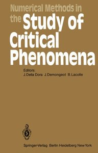Numerical Methods in the Study of Critical Phenomena
