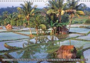 Peter Fischer - Bali 2019 (Wandkalender 2019 DIN A3 quer)