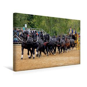 Premium Textil-Leinwand 45 cm x 30 cm quer Moritzburger Hengstpa