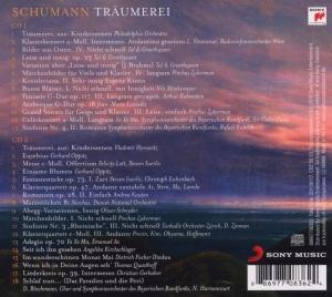 Schumann-Träumerei
