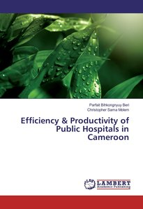 Efficiency & Productivity of Public Hospitals in Cameroon