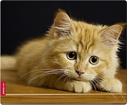Speedlink SILK Mousepad, Baby Cat - zum Schließen ins Bild klicken