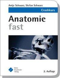 Anatomie fast