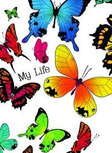 Planer Schmetterling
