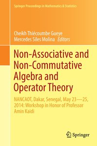 Non Associative & Non Commutative Algebra and Operator Theory