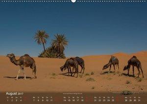Sahara - Land der unendlichen Weite (Wandkalender 2017 DIN A2 qu
