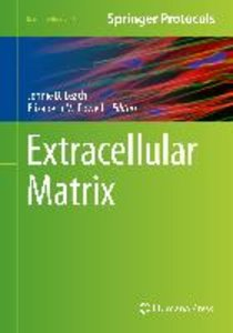 Extracellular Matrix