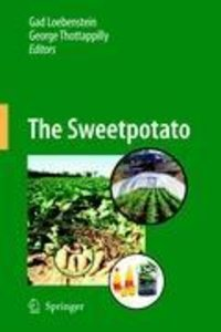 The Sweetpotato