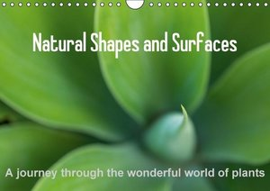 Natural Shapes and Surfaces (Wall Calendar 2015 DIN A4 Landscape