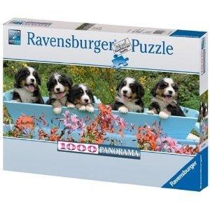 Ravensburger 15116 - Berner Sennenhunde, 1000 Teile Panorama Puz