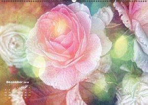 Rosen RomantikAT-Version (Wandkalender 2016 DIN A2 quer)
