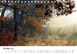 Unterwegs im Teufelsmoor (Tischkalender 2016 DIN A5 quer)