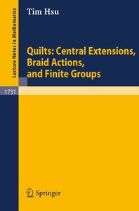 Quilts: Central Extensions, Braid Actions, and Finite Groups