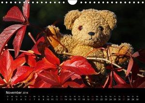 KramBam und seine bärigen Freunde (Wandkalender 2016 DIN A4 quer