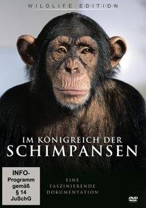 Im Königreich Der Schimpansen