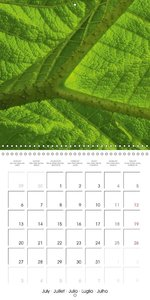Structure of life (Wall Calendar 2015 300 × 300 mm Square)