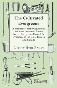 The Cultivated Evergreens - A Handbook of the Coniferous and Mos