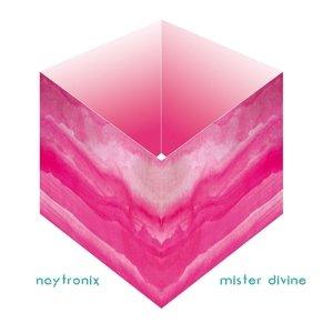 Mister Divine (Vinyl)