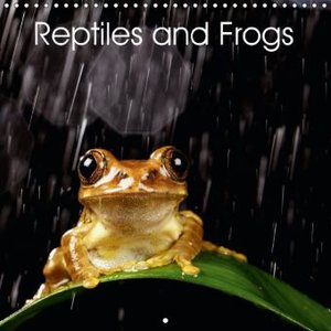 Reptiles and Frogs (Wall Calendar 2015 300 × 300 mm Square)