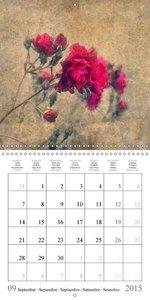 NATURE IN ART (Wall Calendar 2015 300 × 300 mm Square)